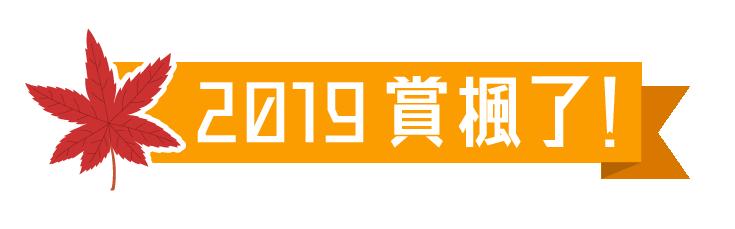 2019紅葉情報