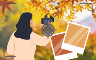 日本韓國紅葉攝影打卡資訊